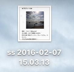 ss 2016-02-07 15.03.44
